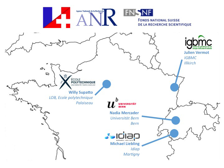Map of collaboration network